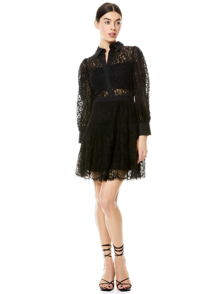 ANAYA COLLARED LACE MINI DRESS - BLACK - Alice And Olivia